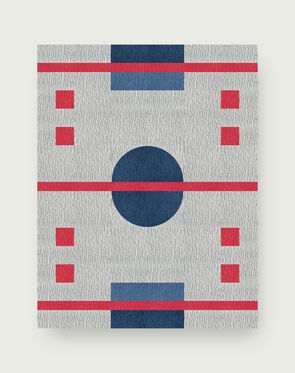Hockey Rink Rug - Frost - 10x12