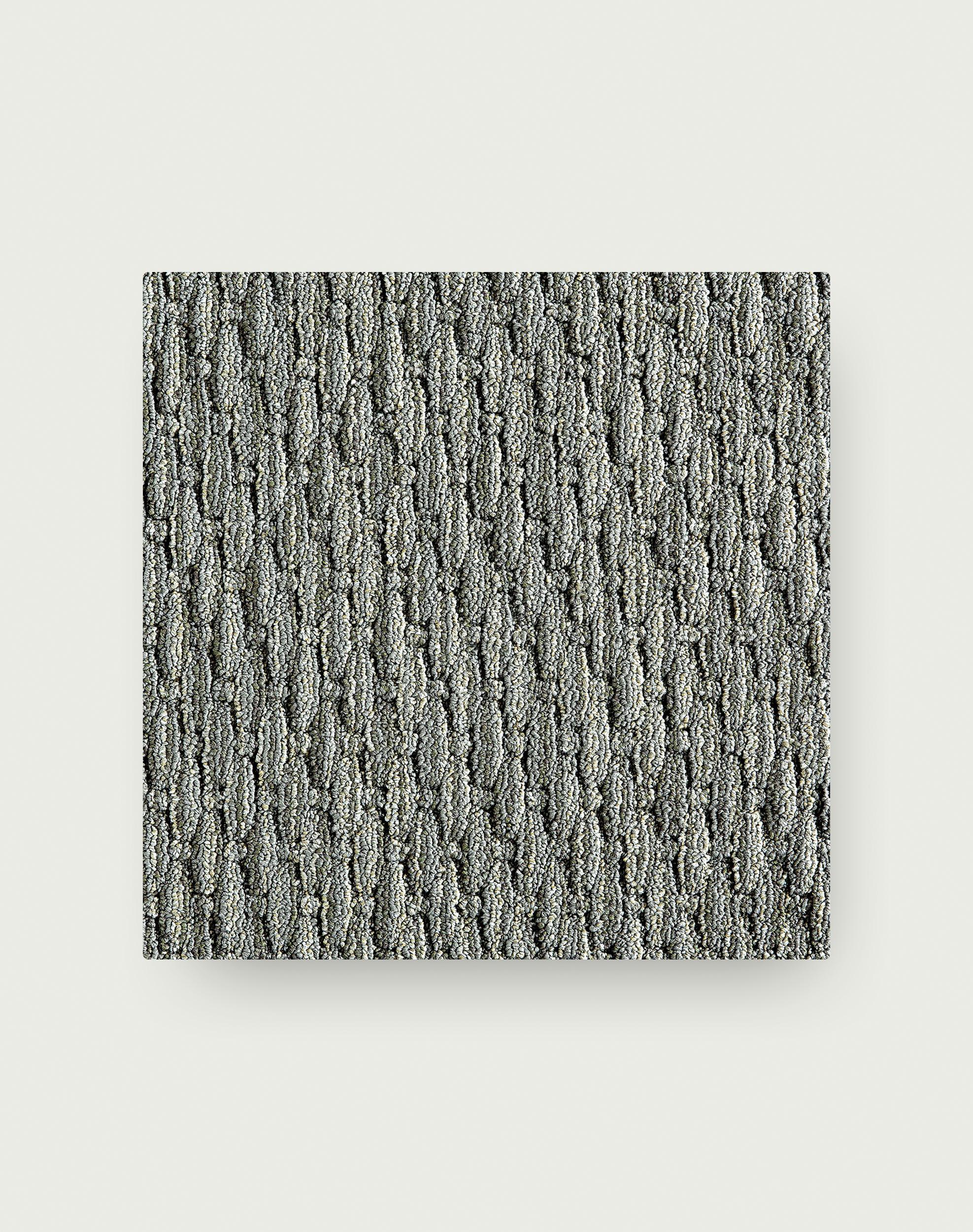 Coming Along - Grey
